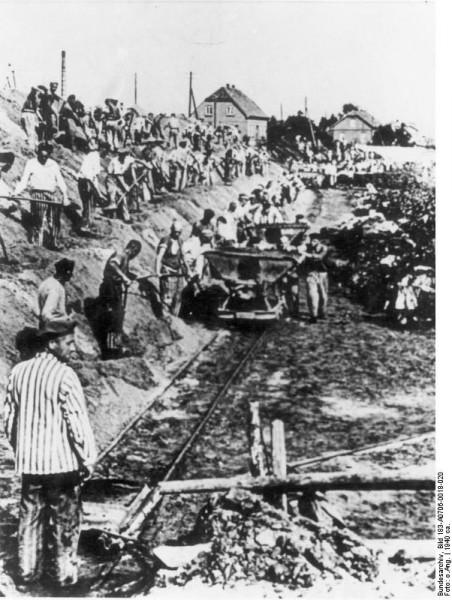 Fanger i det såkalte Klinkerwerk. Mange homofile homofile fanger omkom her som følge av henrettelser eller hardt arbeid kombinert med elendig ernæring. Kilde: Bundesarchiv Bild 183-A0706-0018-020, KZ Sachsenhausen